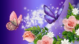 Butterfly Wallpaper Hd Full Screen ...