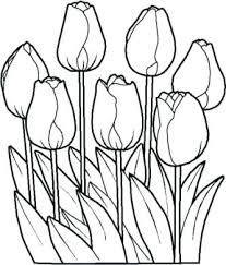 Sagome Tulipani Da Ritagliare Con 81 Sagome Di Fiori Da Colorare E