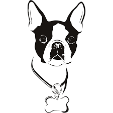 Small Picture Boston Terrier Coloring Page jacbme