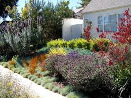 Small Picture Traditional Home Design With Small Backyard Using Chic Drought