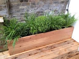 Small Picture Planting pots and containers installation service in London