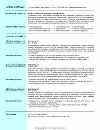 Professional Resume Objective Professional National Sales Manager Resume Objective