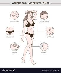 Womens Body Chart Infographic With Womens Body Hair Removal Chart