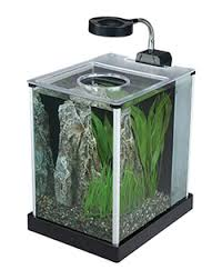 office desk aquarium. Wonderful Aquarium Fluval SPEC Desktop Aquarium To Office Desk F