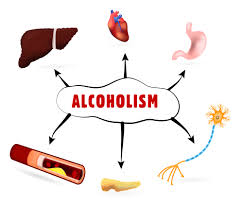 Alcohol Body Aton Health Of Center The And Effects