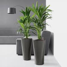 Planters, Large Indoor Plant Pots Planters Black Stylish Self Watering Indoor  Planters And Chairs: