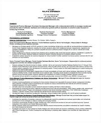 Application Development Manager Resume Release Manager Resume Inside