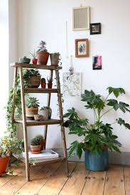 house plants, succulents, cactus and indoor gardens | potted plants and  botanical design for. Ladder DisplayLadder Shelf DecorCorner ...
