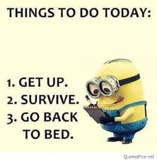 Minions Quotes Interesting 48 Funny Minion Quotes Minionquotes Minionimages Funnyminions