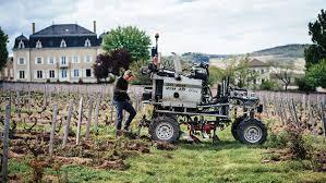 Alphabetical Guide To Beaujolais Wine Spectator