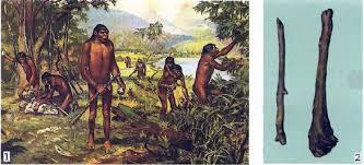 Жизнь древнейших первых людей Первобытная история Реферат  1 Первобытные люди Современный рисунок 2 Палка копалка и дубина