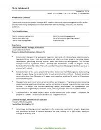 Interesting Project Manager Skills Summary Technical Project Manager