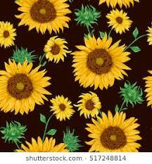 Sunflower Pattern Simple Sunflower Pattern Images Stock Photos Vectors Shutterstock