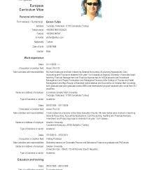 English Curriculum Vitae English Cv Template Download Template English Cv Sample Download