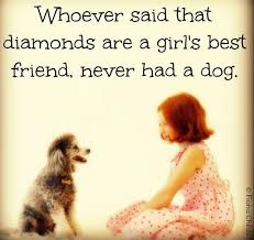Quotes About A Girl And Her Dog Magnificent Girl And Her Dog Quotes Cute Small About Girls Funny On Top