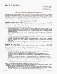 Financial Resume Examples Simple Internal Resume Examples Best Finance Resume Samples Best Od Intern