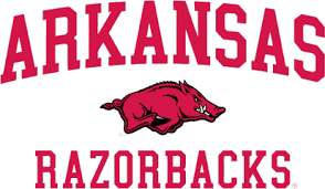 Image result for arkansas razorbacks