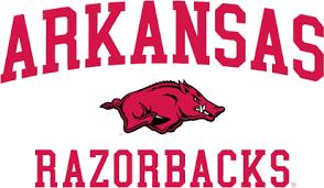 Image result for arkansas razorbacks