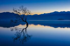 calm blue water. Interesting Calm Nature Landscape Calm Blue Water Trees Lake Reflection Mountains  Birds Sunset New Zealand Wallpapers HD  Desktop And Mobile Backgrounds In Calm Blue Water