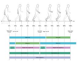 Comprehensive Gait And Balance Analysis Apdm Wearable
