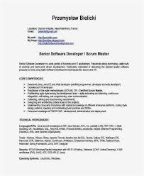 Scrum Master Resume Example Professional Template 32 Gallery Sample