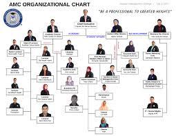 Amc Organization Chart Amc Organizational Chart Usdchfchart Com