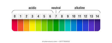 Blank Ph Chart Ph Scale Images Stock Photos Vectors Shutterstock