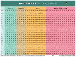 Obese Bmi Chart Amazon Com Nutrition Education Store Bmi Poster Bmi Chart