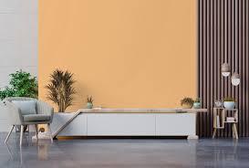 Colecoes ambientes internos com tinta suvinil&nbs. Iquine Homepage