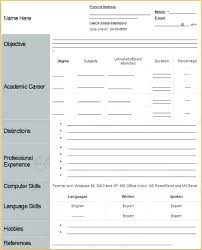 Job Application Template Business Mentor Job Application Template