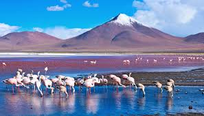 Image result for Bolivia picture