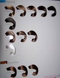 49 Detailed Loreal Diacolor Chart