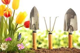 10 top essential gardening tools