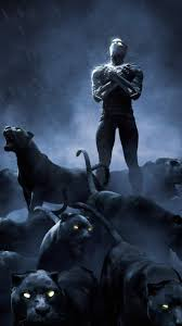 Black Panther 4k Wallpaper For Pc ...