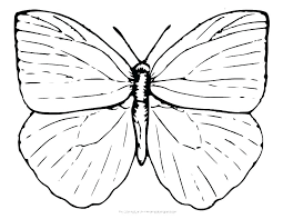 Coloring Pages Of A Butterfly Free Outline Template Printable Simple