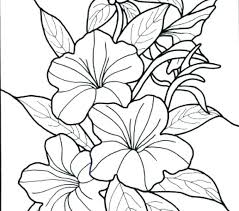 coloring pages flowers for adults 2. Exellent Coloring Free Printable Flower Coloring Pages Colouring  Flowers Page 2 Inside Coloring Pages Flowers For Adults F