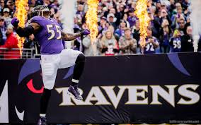baltimore ravens wallpaper 4 1920 x 1200