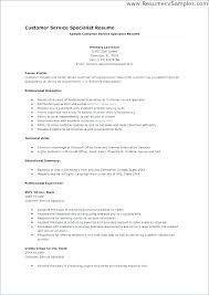 Customer Service Skills In Resume Customer Service Summary Resume Wikirian Com
