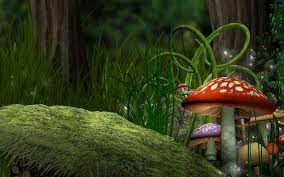 Mushroom Forest Wallpapers - Top Free ...