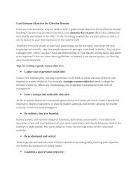 A Good Resume Objective Berathen Com