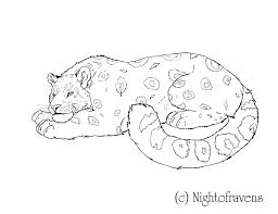 Snow Leopard Coloring Pages Coloring Page Leopard Animals Printable