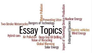ideas for essays co ideas for essays