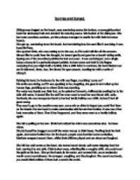 essay about describing a beach beach scene essay examples kibin