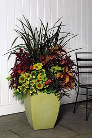Small Picture Plant Container tips A general design rule is to mix elements