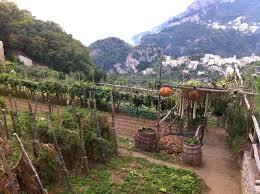 Kitchen Garden Produce Fabulous Location For Villa Marias Organic Vegetable Garden