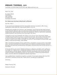 Salesperson Cover Letter Brilliant Cover Letter Template Veterinary