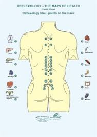 Pressure Points On Legs Diagram Reflex Google Search