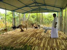 Goat Shed Design And Pictures Download Shed Plans Better Homes And Gardens Goat Farm Shed