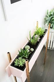 Accessories: Indoor Desert Plant Decoration - Indoor Garden
