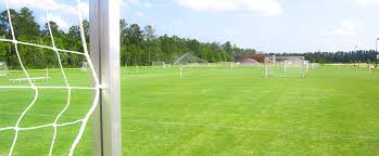 grass soccer field with goal. Simple Goal Inside Grass Soccer Field With Goal